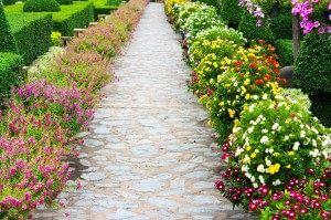 Pad met bloemen
